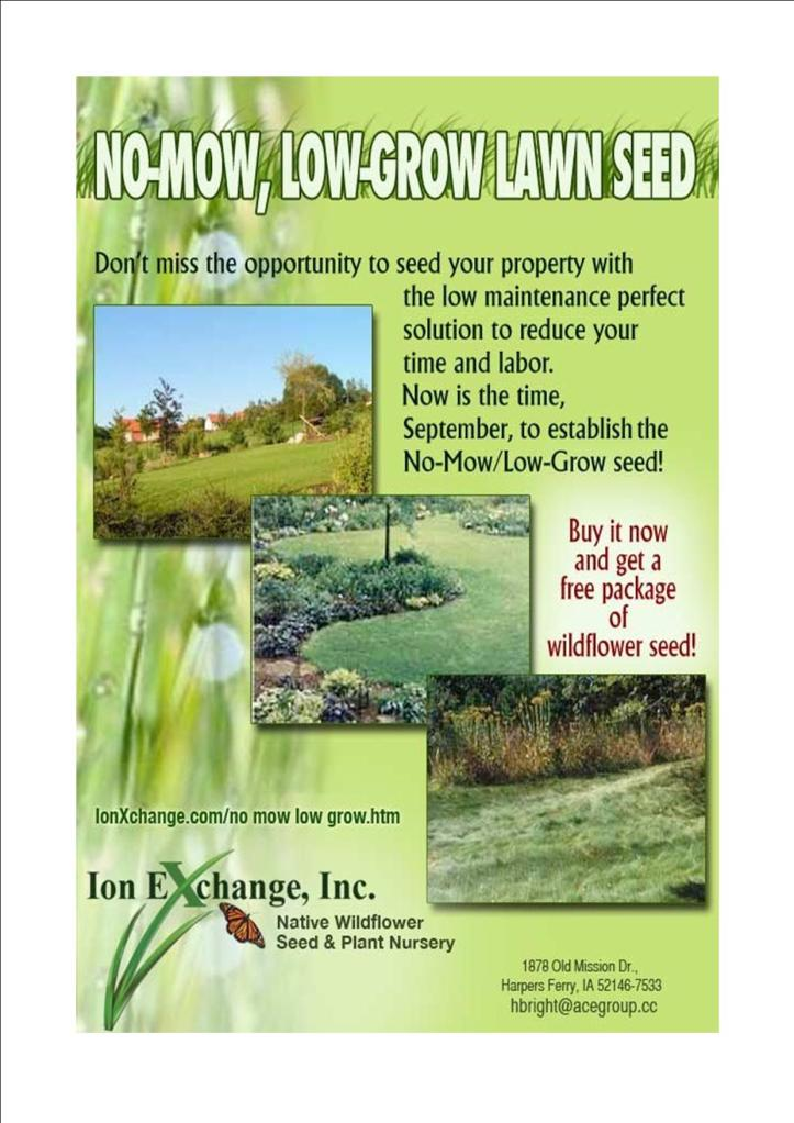 No-Mow-Low-Grow Grass Seed